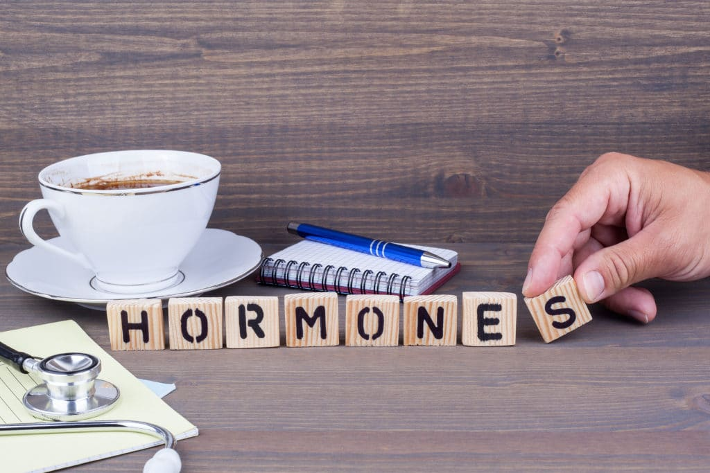 How To Harness Your Hunger Hormones